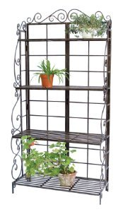 Our Favorite Indoor Plant Stands!
